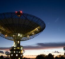 The Lit Dish at Dawn by Dave Fitches