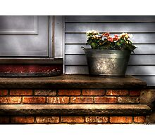 Tub of flowers Photographic Print
