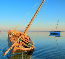 Dhow in the shallow turquoise water by jacojvr