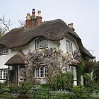 Thatched Cottage Lyndhurst by Ticklemepink