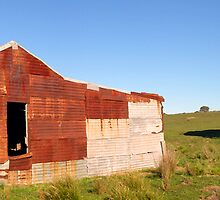 Old Shearing Shed Rusting in the Afternoon Sun, Currawang, NSW, Australia by Peter Clements
