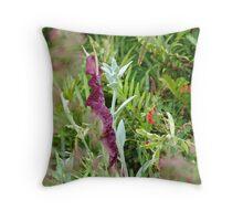 profundus puniceus flower in pluvial Throw Pillow