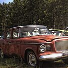 HDR 59 Pink Studebaker by Paola Jofre