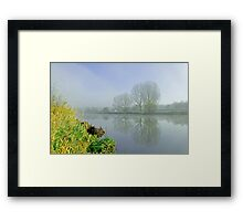 Misty Trees at Waterside, Stapenhill Framed Print