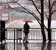 Flood Watch by Alvin-San Whaley