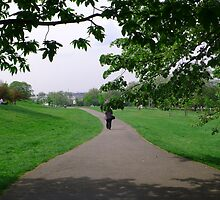 A Stroll in the Park by DavidFrench