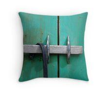 Green Cabinet Throw Pillow