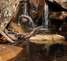 Gibraltar Creek by Werner Padarin