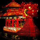 The Dragon by zandria