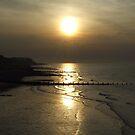 Metallic Sunset by CinB
