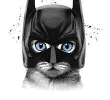 SuperCat! by Julien Missaire