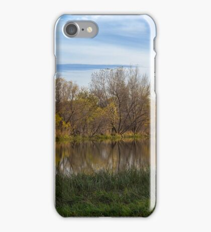 Fall Reflection in Water iPhone Case/Skin