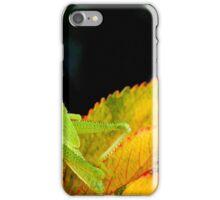 Green Grasshopper iPhone Case/Skin