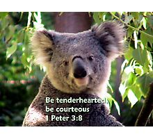 Be tenderhearted Photographic Print