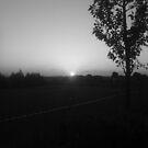 Black & White Dawn by Mathew Woodhams