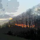 Forest Fire by Mathew Woodhams
