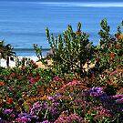 Purple Ocean View by Barbara Gordon