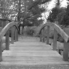 bridge in garden by ksteiling