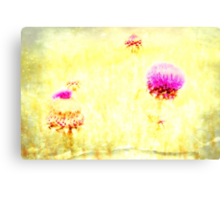 Thistle - JUSTART © Canvas Print