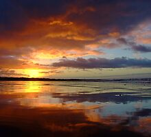 new dawn by Chris Attwell