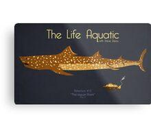 The Life Aquatic - Jaguar Shark Metal Print