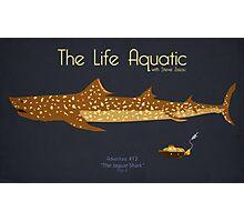The Life Aquatic - Jaguar Shark Photographic Print
