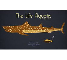 The Life Aquatic - Jaguar Shark Photographic Print