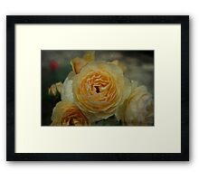 Textured Rose - JUSTART © Framed Print