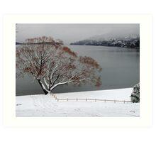 Toboggan Tree Art Print