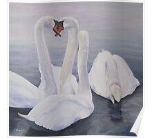 Four Swans, Kensington Palace Gardens' Round Pond Poster