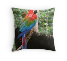 red and green macaw parrot Throw Pillow