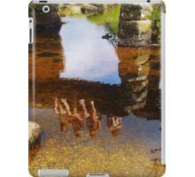 Postbridge Reflections iPad Case/Skin