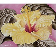 Yellow Hibiscus Photographic Print