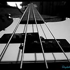 Bass1 by elizabethrose05