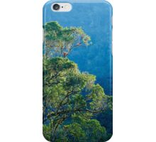 Amazonian Cloud Forest iPhone Case/Skin
