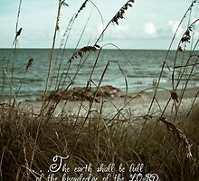 Beach Grass Oats- Isaiah 11:8-10 by Janis Lee Colon