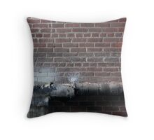 pipe burst Throw Pillow