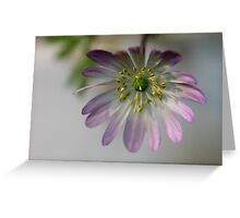 Anemone  - JUSTART © Greeting Card