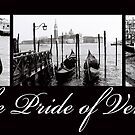 Pride of Venice by DavidROMAN