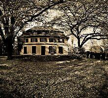 the mansion. by adornoir