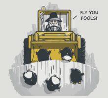 FLY YOU FOOLS by PagingDrLockart
