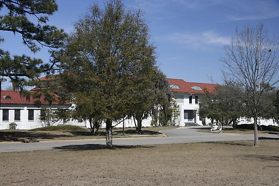 Old Naval Hospital Charleston, SC by Leta Davenport