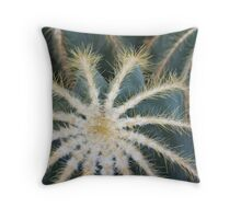 Sharp Beauty - Elegantly Ordered Cactus Needles Throw Pillow