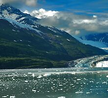 Beautiful Alaska by DSHill