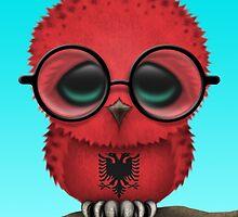 Nerdy Albanian Baby Owl on a Branch by Jeff Bartels