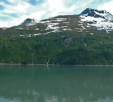 Alaskan Mountains by DSHill