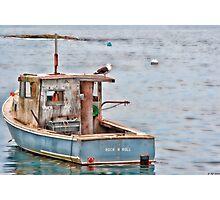 Gull & Boat Photographic Print