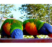 SHOWING OUR TRUE COLOURS Photographic Print