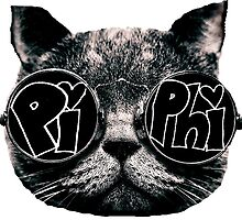 pi phi cat by clast