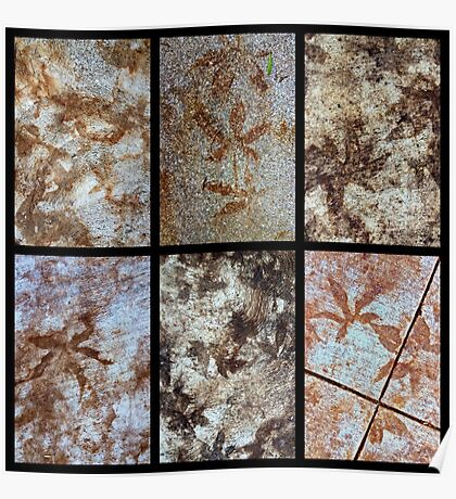Leaf Stains ~ New Fossils Poster